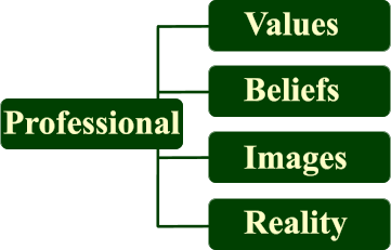 Professional Values Images Beliefs Reality