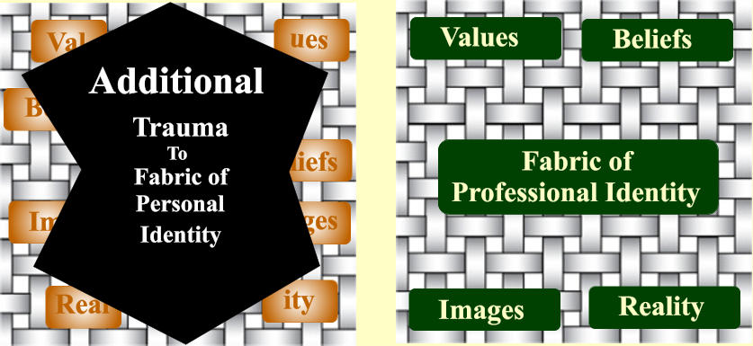 Fabric of  Professional Identity Values Images Beliefs Reality Val ues Im ages ity Real Be liefs Trauma To Fabric of Personal Identity Additional