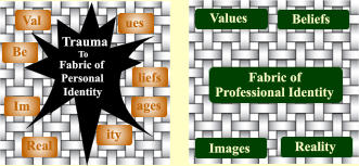Fabric of  Professional Identity Values Images Beliefs Reality Val ues Im ages ity Real Be liefs Trauma To Fabric of Personal Identity